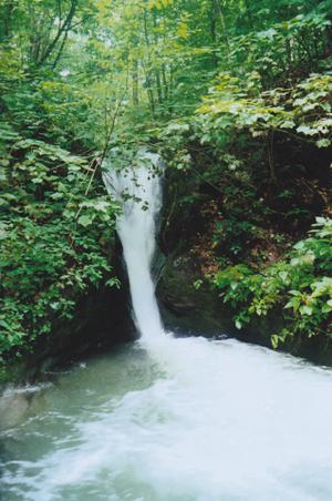 Berlin Road Waterfall