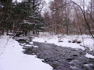 Hemlock Brook (Lamb)