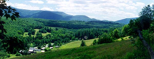 Rosenburg Farm - Sheep Hill